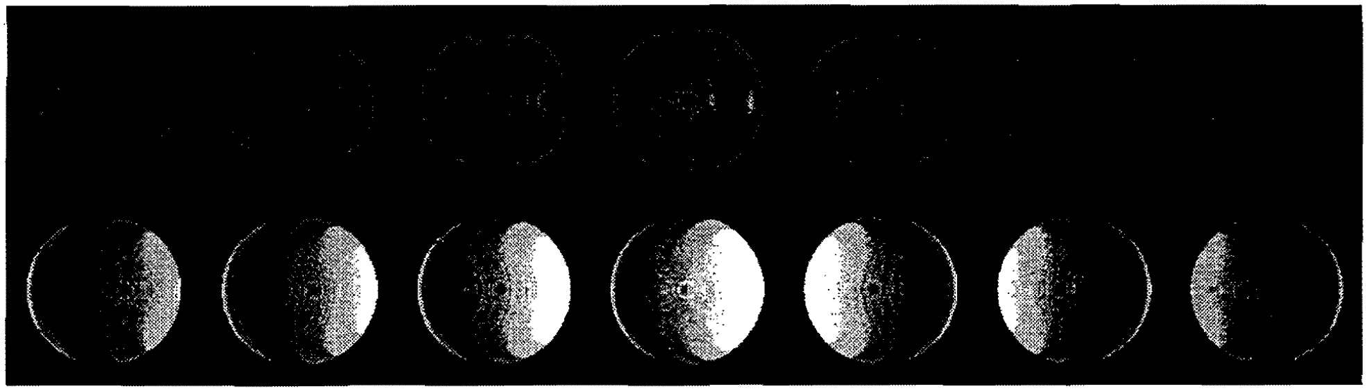 Sheared Interpolation and Gradient Estimation for Real-Time Volume Renderings