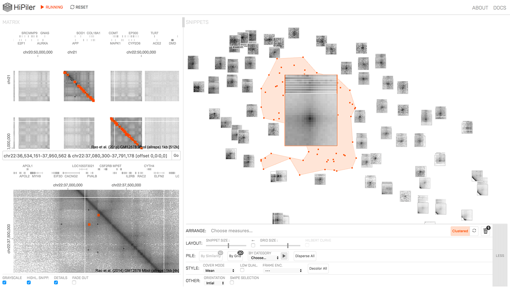 HiPiler: Visual Exploration Of Large Genome Interaction Matrices With Interactive Small Multiples