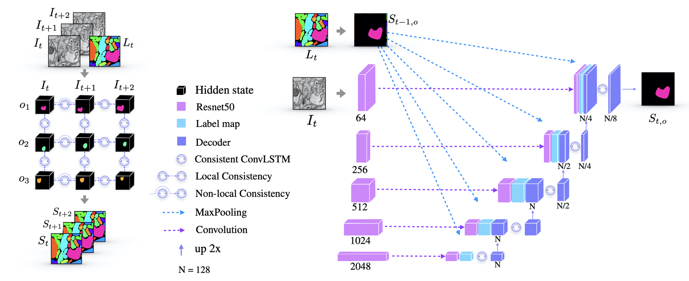Consistent Recurrent Neural Networks for 3D Neuron Segmentation